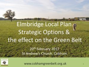 Cobham Green Belt Presentation